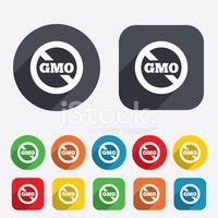 Gmo food research paper